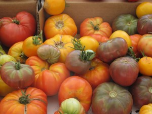 F40 Heirloom Tomatoes
