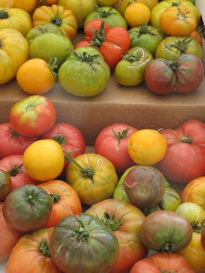 Farmers Mkt Tomatoes Web